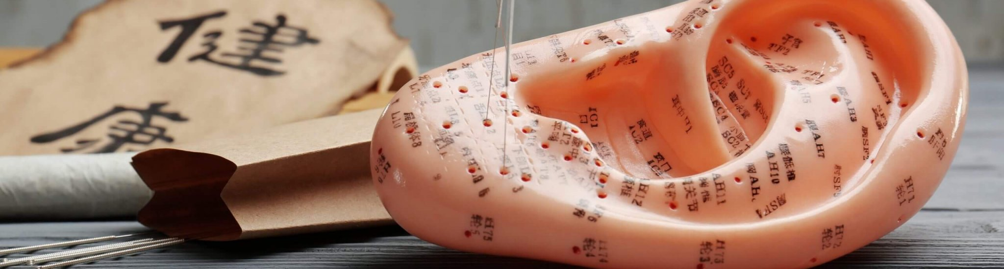 Model of ear with acupuncture needles on table